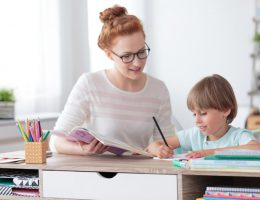 Private tutor helping young student